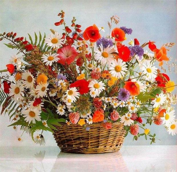 опытом букеты полевых цветов с надписью 8 марта сияние