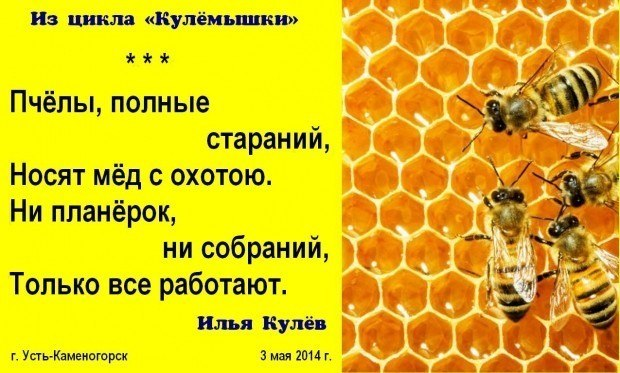 Стихи про пчеловода
