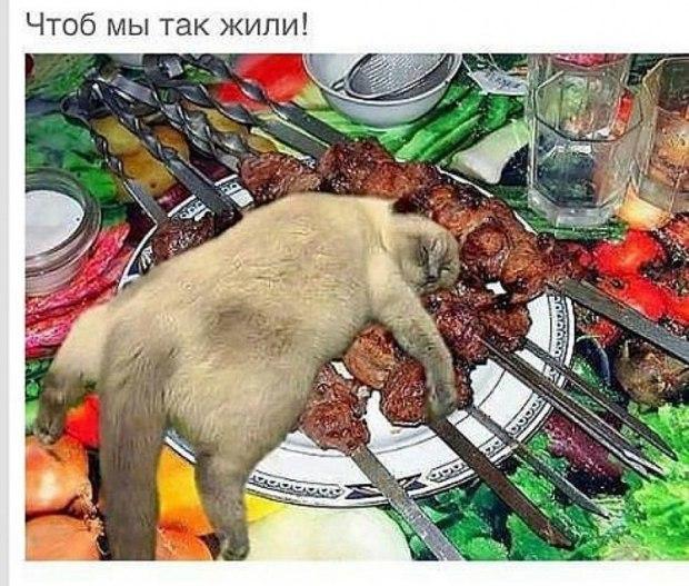 Улыбка выходного дня ))