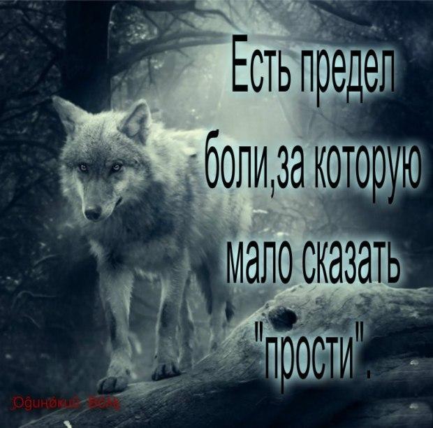 Картинка с волками и надписью