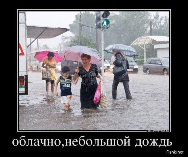 Смешные картинки на тему дождя, днем