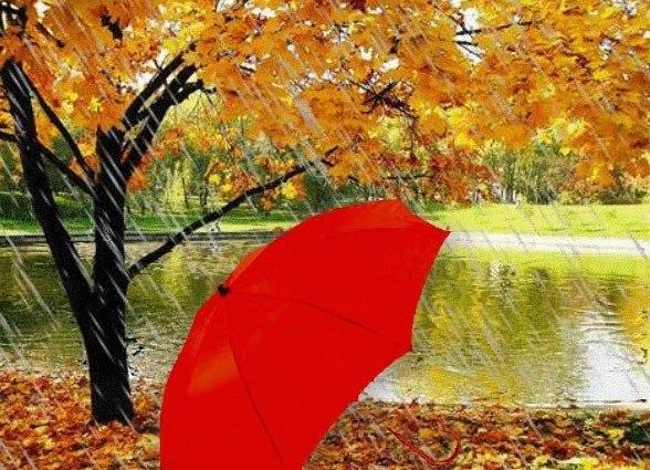 Осень дождями ляжет