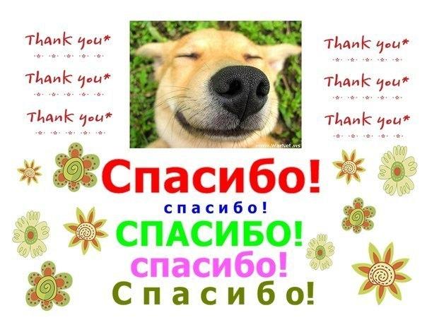 http://www.chitalnya.ru/upload3/951/13fa3b02b8f749f21005c4fea776cd36.jpg
