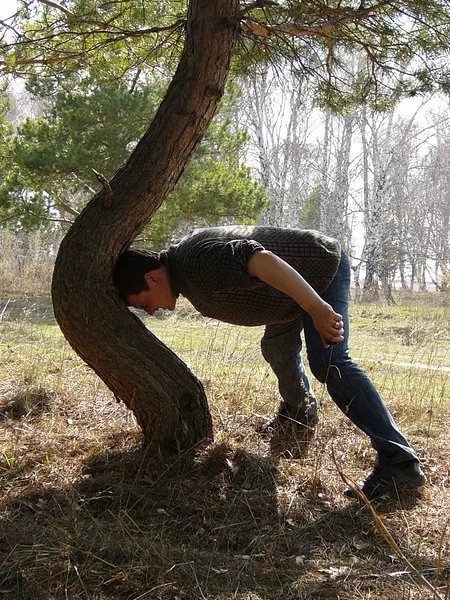 прибить фото к дереву головою вниз отомстить чисто мужски очень
