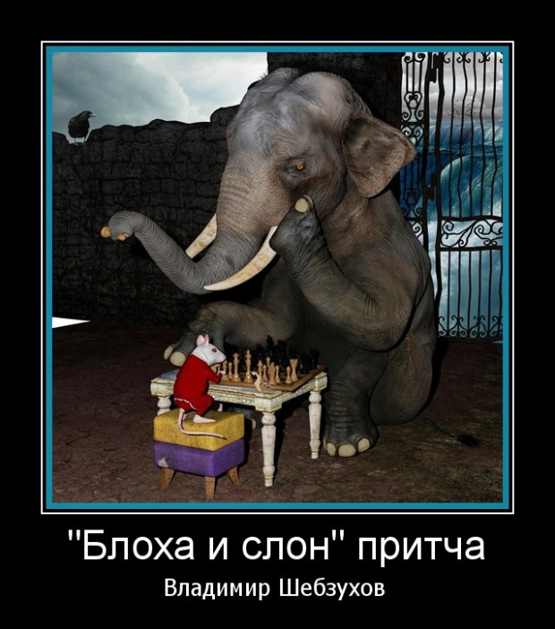 Блоха и слон