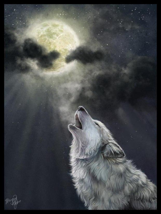 Тему рисование, одинокая волчица картинки