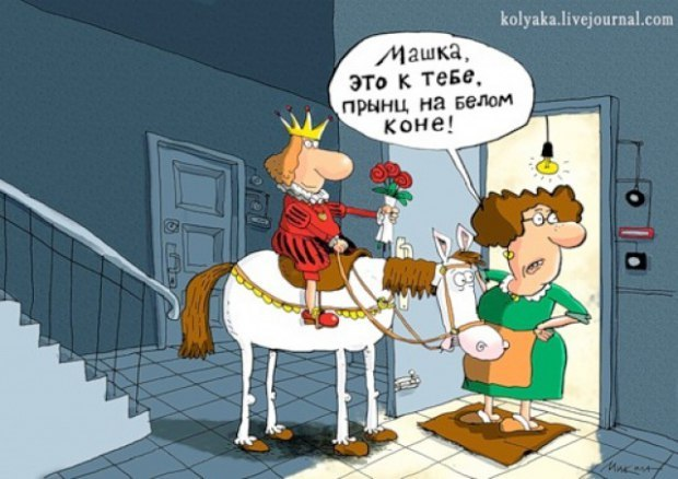 любой картинка шуточная принц на коне ника нашла детеныша